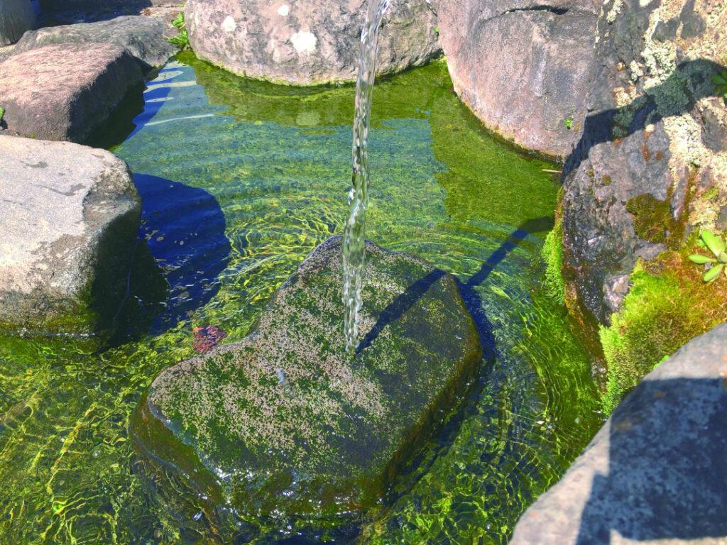 木島平村の天然給水スポット 加茂清水